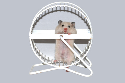 Take a break from the hamster wheel with acupuncture.