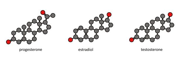 Sex hormones: progesterone, estradiol, testosterone
